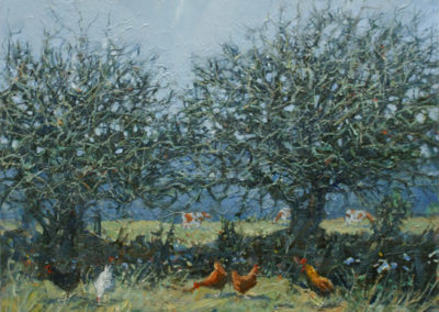 Blackthorn, Chickens & Cows