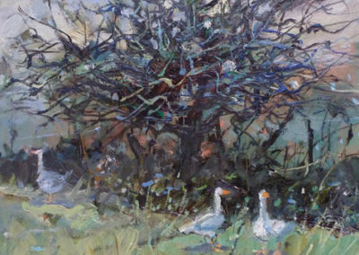 Winter Tree, Geese