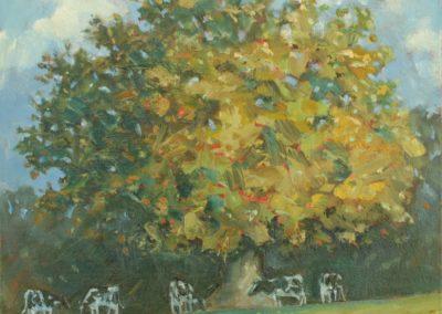 Autumn Oak And Cows II