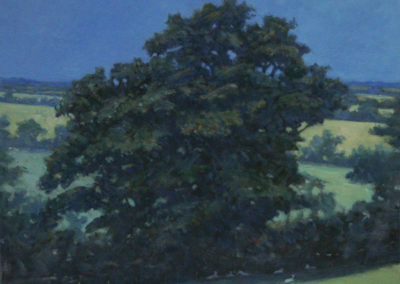 Oak Tree, Summer II