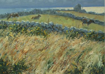 Gorse, Sea and Cows, Troy Town, St Agnes, Isles of Scilly I