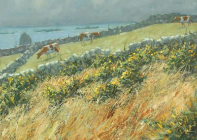 Gorse, Sea and Cows, Troy Town, St Agnes, Isles of Scilly II