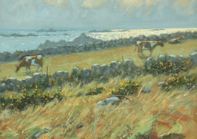 Troy Town Farm, St Agnes, Isles of Scilly II