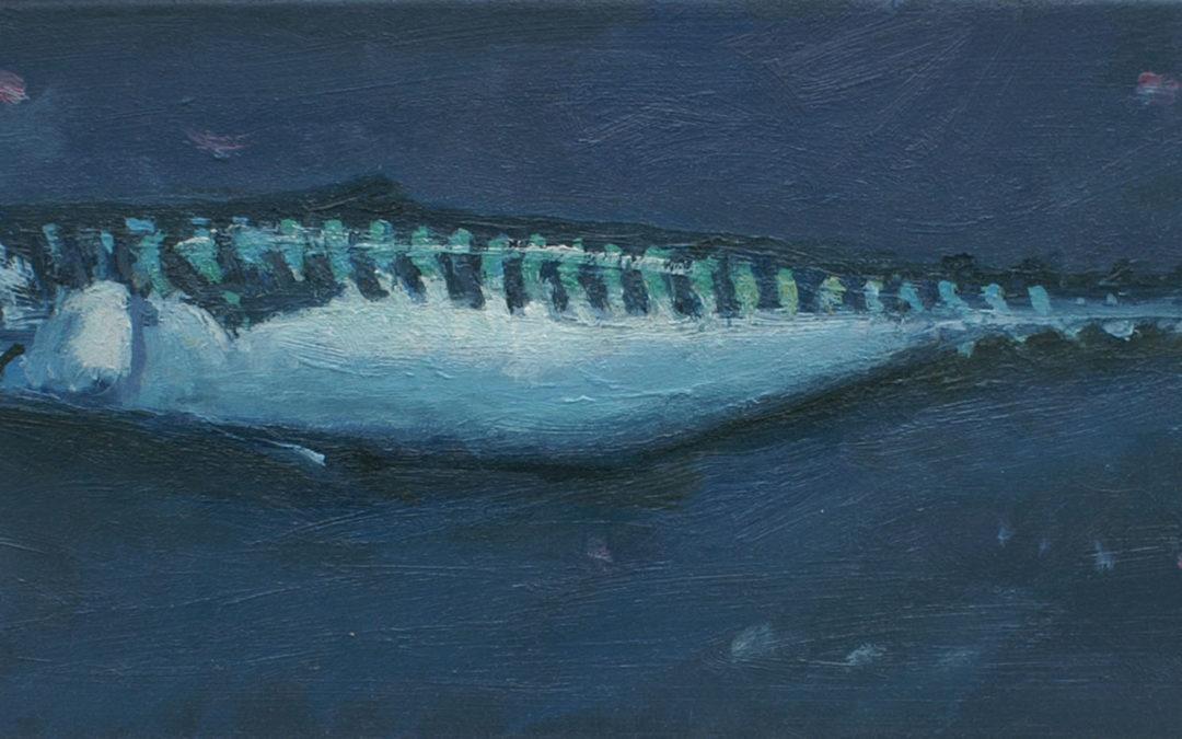 Mackerel II
