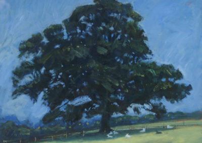 Oak Tree, Summer