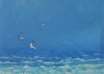 Sea, Rocks & Gulls